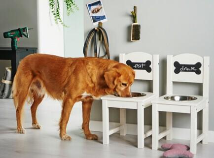 Hundeskål